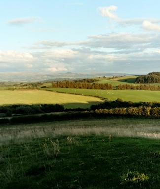 Vale Farm New 1